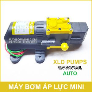 May Bom Ap Luc Mini Tu Dong 12v 30w Xld
