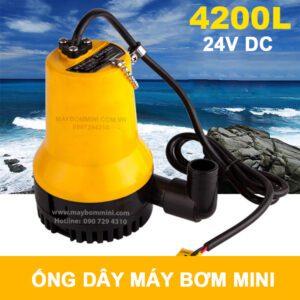 May Bom Chim 24v 2.jpg