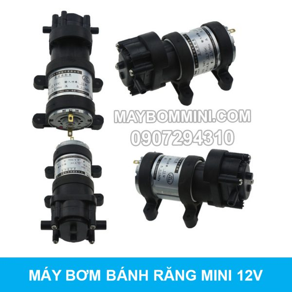 May Bom Mini Banh Rang 12v 4l