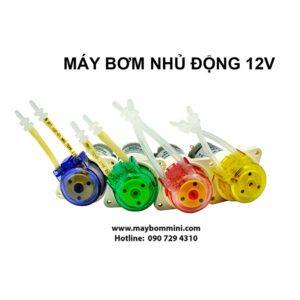 May Bom Nuoc Mini 12v 6.jpg