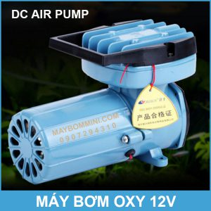 May Bom Oxy DC Oxygen Air Pump